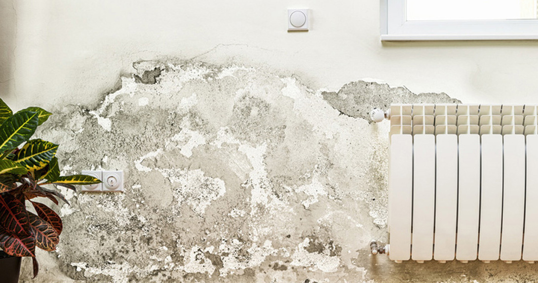 Fabulous Alles über Schimmel in Wohnungen | Verbraucherzentrale.de XJ99